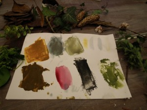 Wild Paint at The Potters Barn